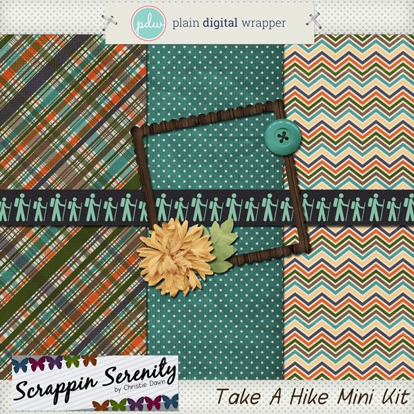 Plain Digital Wrapper ? DSD Blog Hop!